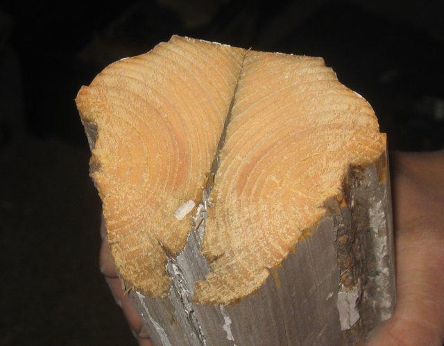 Palotikkaat puusta